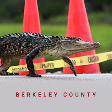 Berkeley County